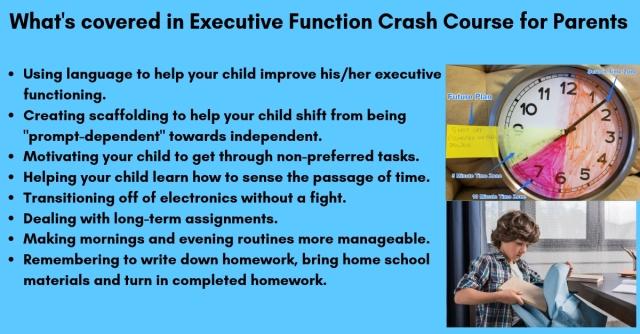 ryan-wexelblatt-executive-function-skills-course
